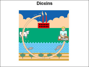 dioxins1
